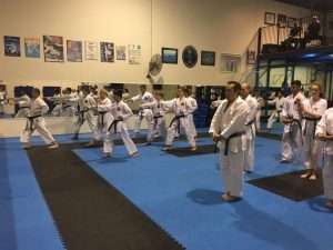 Brisbane Karate Academy